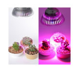 Hydroponic LED Lighbulb – Grow Light Plant Grow Lights E27 12w